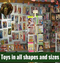 Adult Boutique Store Peoria IL